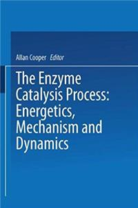 The Enzyme Catalysis Process: Energetics, Mechanism and Dynamics (Nato Science Series A:)